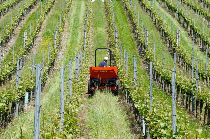 A tough year for European agriculture