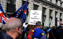 The UK is ready for an interim customs union with the EU