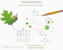 Qlik: A Pioneer In Data Discovery To Face A Tough Competition