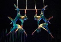 Sun King and his Circus: Cirque du Soleil's Story of Success