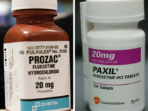 The intake of Prozac and Paxil may lead to birth defects