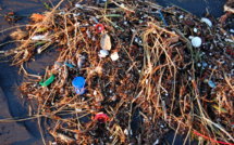 Alliance of large global companies takes on fight against plastic pollution