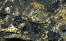Is it worth investing in palladium?