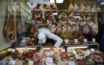 Is it worth to bet on meat alternatives?