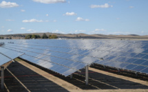 Will EU solar boom help curb climate change?
