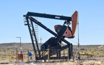 Experts: US oil production will begin to decline in May