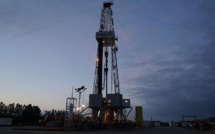 Moody's assesses the consequences of COVID-19 pandemic for global oil and gas market