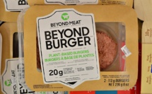 Beyond Meat shares plummet by 28% after poor reporting