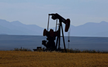 WSJ: Saudi Arabia to raise oil output from April
