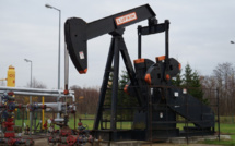 """OPEC is urged to """"open the oil taps"""""""