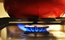 IEA: Growing demand for gas will result in inevitable global catastrophe