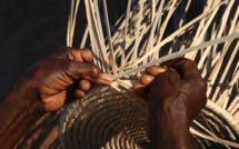 From Weaving Basket To Afforestation – The Efforts Of Zimbabwean Women Entrepreneurs Are Exemplary